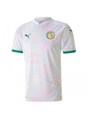 Cameroon home jersey world cup 2014