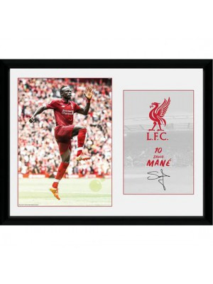 Liverpool FC Picture Mane 16 x 12