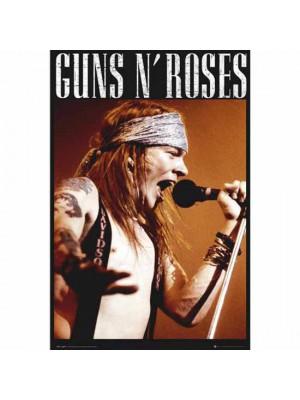 Guns N Roses Poster Axel 167