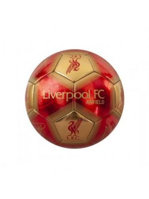 Liverpool FC Skill Ball Signature