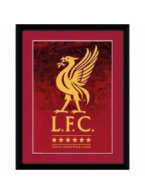Liverpool FC Picture Crest & Stars 16 x 12