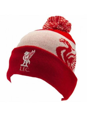 Liverpool FC Quick Check Ski Hat RD