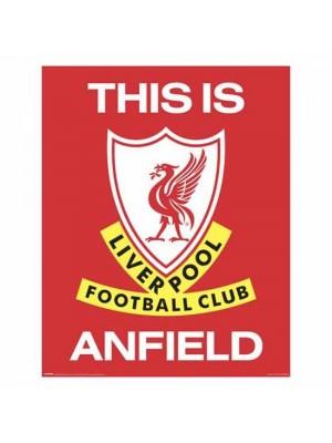 Liverpool FC Mini Poster TIA 401