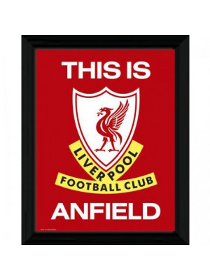 Liverpool FC Picture T I A  16 x 12