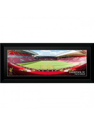 Liverpool FC Picture Anfield 30 x 12