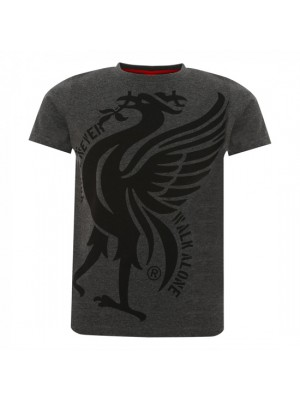 Liverpool Boys Charcoal Liverbird Ynwa Tee