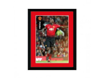 Manchester United billede - Picture Pogba 8 x 6