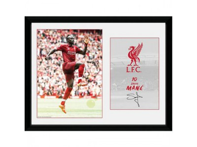 Liverpool billede - Picture Mane 16 x 12 inches