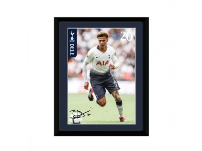 Tottenham billede - Picture Dele 8 x 6 inches