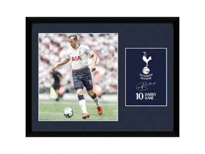 Tottenham billede - Picture Kane 16 x 12 inches