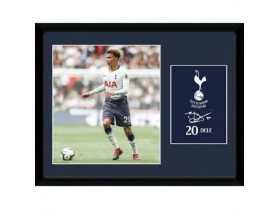 Tottenham billede - Picture Dele 16 x 12 inches