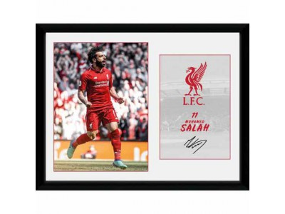 Liverpool billede - Picture Salah 16 x 12 inches