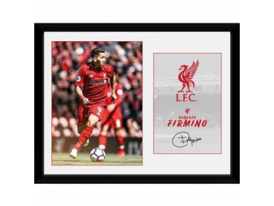 Liverpool billede - Picture Firmino 16 x 12 inches