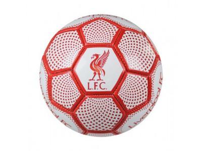 Liverpool mini bold - LFC Skill Ball DM - str. 1