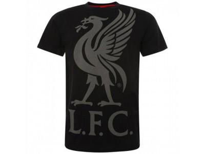 Liverpool T-SHIRT - LFC Liverbird T Shirt Mens Black - M