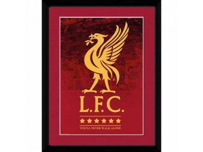 Liverpool billede - LFC Picture Crest & Stars 16 x 12
