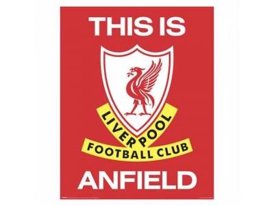 Liverpool mini plakat - LFC Mini Poster TIA 401