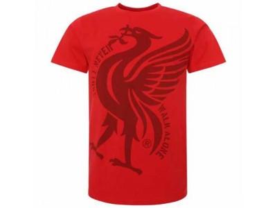 Liverpool t-shirt - LFC Liverbird T Shirt Mens Red - XXL