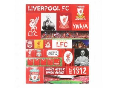 Liverpool køleskabsmagnet - LFC Fridge Magnet Set