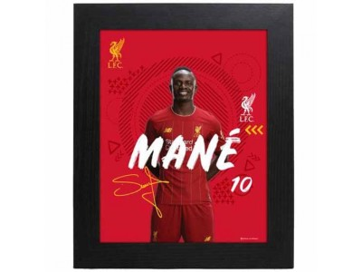 Liverpool billede - LFC Picture Mane 10 x 8 inches