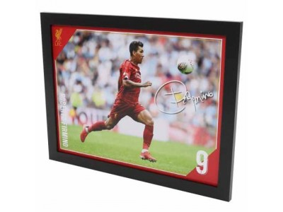 Liverpool billede - LFC Picture Firmino 16 x 12 inches