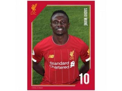 Liverpool foto - LFC Headshot Photo Mane