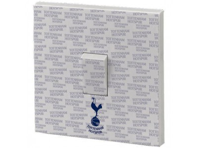 Tottenham Hotspur - Light Switch Skin