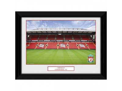 Liverpool FC billede - Picture Anfield 16 x 12