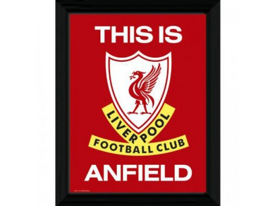 Liverpool FC billede - Picture T I A  16 x 12 inches