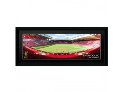 Liverpool FC billede - Picture Anfield 30 x 12 inches