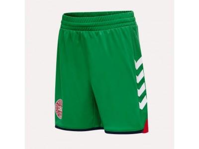Danmark målmands shorts 2020/22 - grøn - børn - fra Hummel